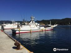 Kesennuma Port-气仙沼市