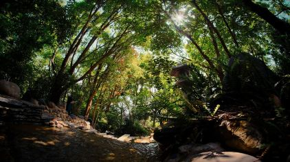 湖泉半山温泉 (13)