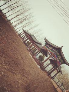 文化公园-德惠-_CFT0****9815