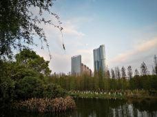 艾溪湖湿地公园-南昌-囧囧有神5685