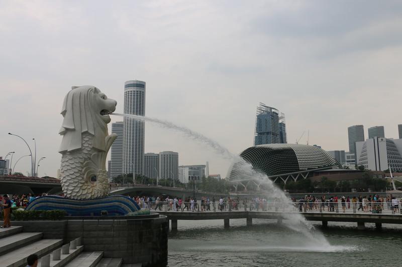 非常新加坡——和儿子的第一次亲子游。