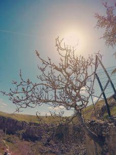 厄赫拉热峡谷-卡帕多奇亚-爱耍的周大爷