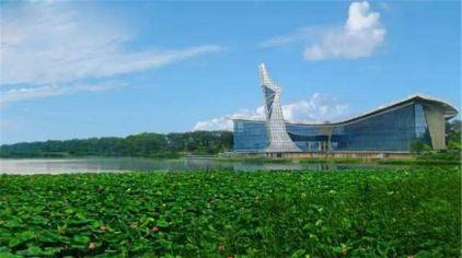 铁岭莲花湖湿地02