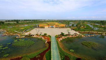 水生植物园:洪泽湖湖神的私家花园