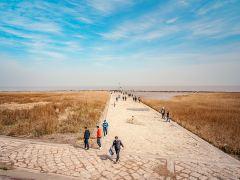 探访《悲伤逆流成河》上海取景地行程路线