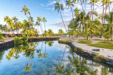 559143496_medium-夏威夷-尊敬的会员