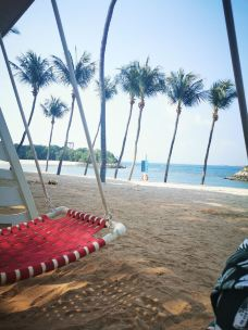 巴拉湾海滩-新加坡-M56790068877