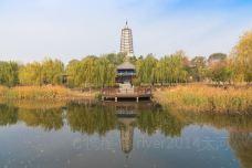 舍利塔滩地公园-沈阳-river2014大河
