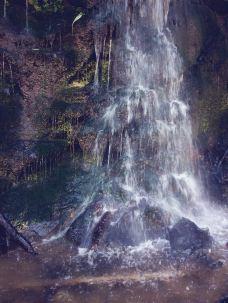 二滩国家森林公园-盐边-M29****6032