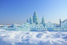 哈尔滨冰雪乐园-哈尔滨-C-image2018