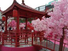 广州友谊商店(环市东店)-广州-D27****946