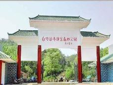 白竹园寺国家森林公园-枣阳-半把刀