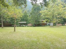 小坑国家森林公园-韶关-M40****8269