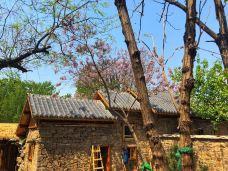 白龙庙度假村-鹤壁-当地向导伊妹儿