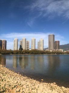 章樾公园-桓仁-幸运紫端
