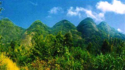 dabieshanfengqinggujingqu-wuzhifeng