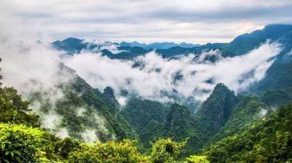 龙潭森林公园11
