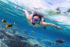 石螺口海滩潜水体验-涠洲岛-doris圈圈