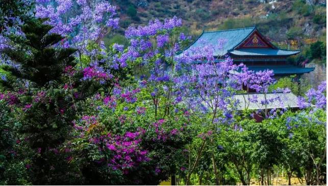 攀枝花有多少人口_724亩优质土地亮相春城, 英雄攀枝花 投资价值备受关注