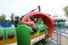 果虫滑车-芜湖