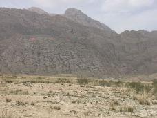 拜城县国际狩猎场-拜城-126****969