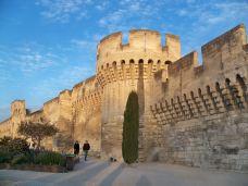 阿维尼翁城墙-阿维尼翁-南湖花豆椒