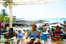 The Fish Market-巴拿马城-pxy0705