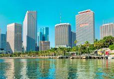 海湾公园-迈阿密-doris圈圈