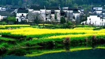 思溪延村的绕河的溪流