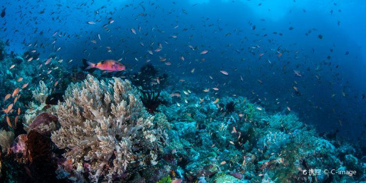 苏拉威西岛图片