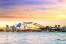 悉尼-doris圈圈