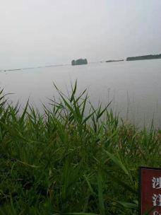 大纵湖-盐城