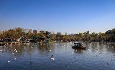 翠湖公园-铜陵-吴立珍