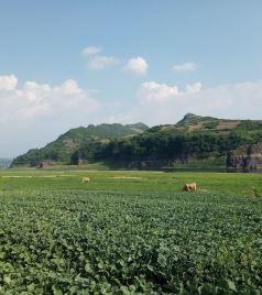 四平游记图文-一月一城,悠闲游吉林   ||   9个月,9座城 最适合的时间去最美的地方