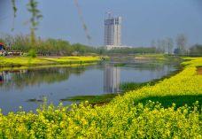 三里河景区-新野-SUN12999