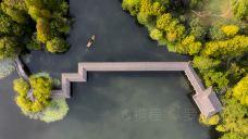 西湖-杭州-放羊君