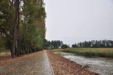 汉石桥湿地-顺义区-138****5752