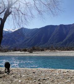 山南游记图文-冬游西藏:蓝天绿水,日照金山,还有风景在路上