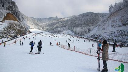 大明山高山滑雪134461 (24)