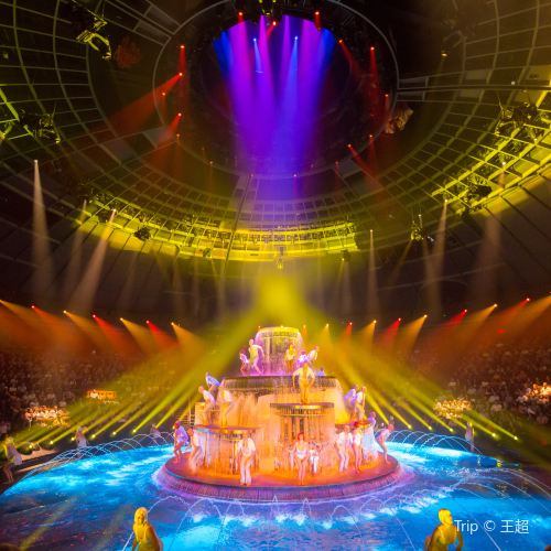"""O"" by Cirque Du Soleil Show Ticket Las Vegas"