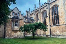 三一学院-剑桥-不如没有好