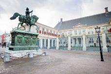 荷兰女王宫-海牙-doris圈圈