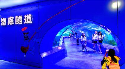 重庆欢乐海底世界20