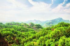 武夷山森林公园-武夷山-尊敬的会员
