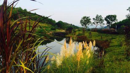 汀江国家湿地公园 (13)