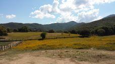 Parc Naturel d'Olva-萨尔泰讷