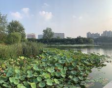 徐州汉文化景区-徐州-穆尔海姆康里脱脱