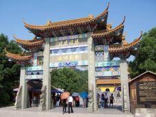 杨岐禅寺-萧山区-一个大橙子