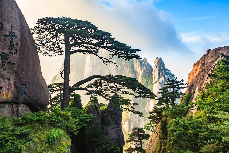 Huangshan (Yellow Mountain) Scenic Area Ticket
