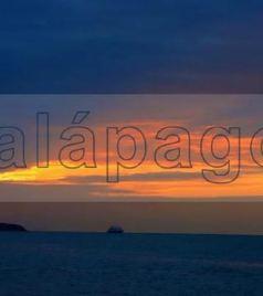 加拉帕戈斯游记图文-去过了南极北极,更不能错过这神秘的史前世界 —加拉帕戈斯群岛